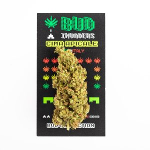 bellastoria-marijuana-light-budinvaders-min