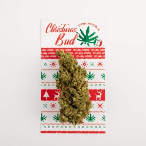 bellastoria-marijuana-light-christmas-bud