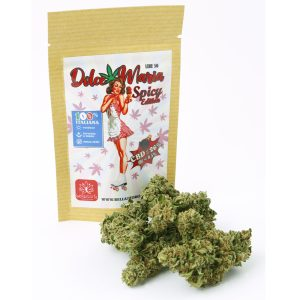 bellastoria-marijuana-light-dolce-maria-spicy-edition